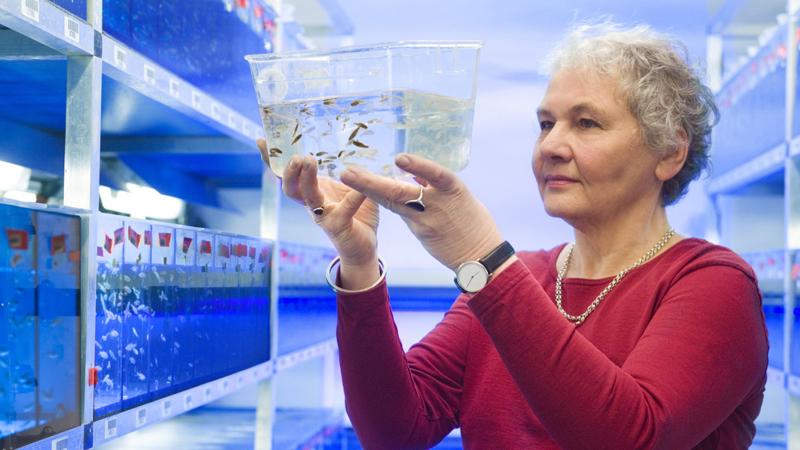 10 kobiet, które wytyczyły drogę dzisiejszym naukowcom