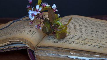 8 niezwykłych książek, które ukazują różne oblicza miłości. Gdy je przeczytasz, inaczej spojrzysz na świat!
