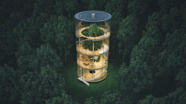 Oto jeden z najbardziej nietuzinkowych domów na świecie. W środku szklanego budynku stoi… drzewo!