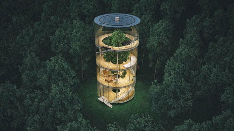 Oto jeden z najbardziej nietuzinkowych domów na świecie. W środku szklanego budynku stoi... drzewo!