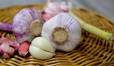 Czosnek to doskonały lek nie tylko na przeziębienie. Poznajcie inne właściwości tego niewielkiego warzywa