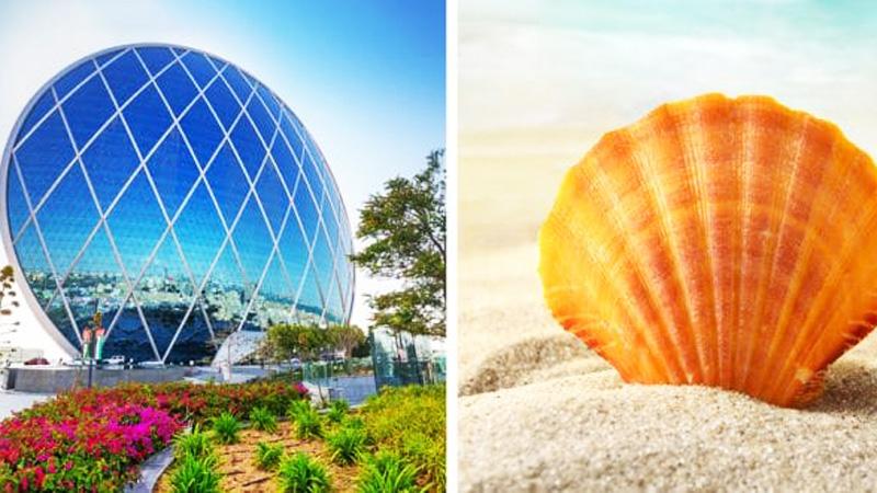 13 budynków inspirowanych naturą. Musisz zobaczyć te niezwykłe architektoniczne dzieła!