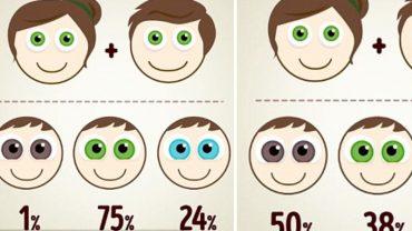 Chcesz się dowiedzieć, jaki kolor oczu będzie mieć twoje dziecko? Kliknij i sprawdź, czy odziedziczy go po tobie!