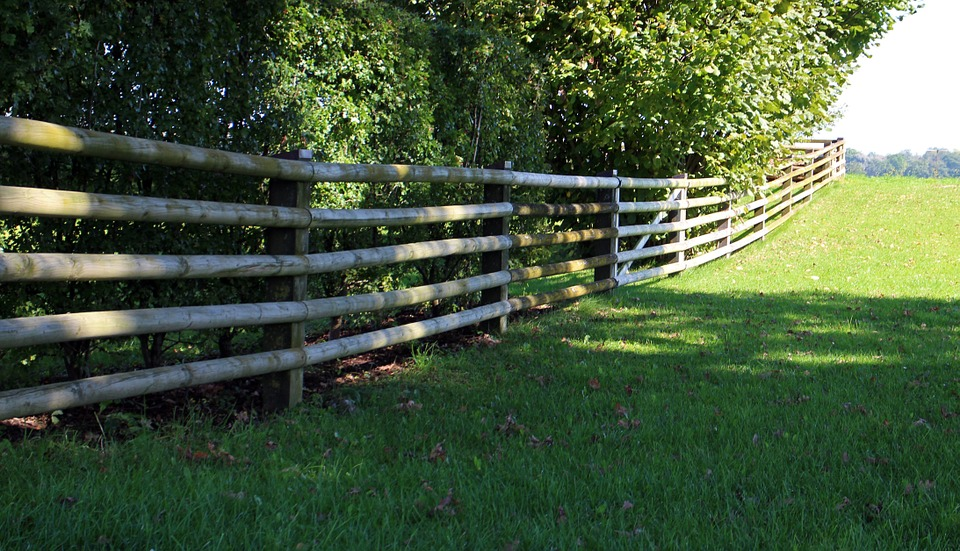 wood-fence-466106_960_720