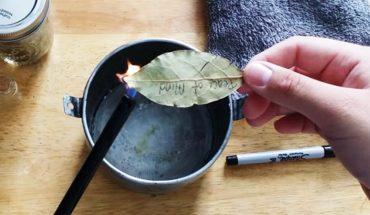 Kobieta podpaliła kilka liści laurowych. Gdy zobaczysz co się stało po 10 minutach, będziesz chciał spróbować tego u siebie w domu!