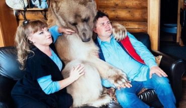 23 lata temu adoptowali małego niedźwiedzia. Dziś jest ich najlepszym przyjacielem