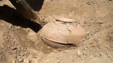 Studenci archeologii znaleźli miskę z nasionami, ukrytą 800 lat temu. Gdy je zasadzili, nie mogli uwierzyć w to, co z nich wyrosło!
