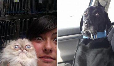 Zobacz zwierzaki, które uświadomiły sobie, że jadą do weterynarza