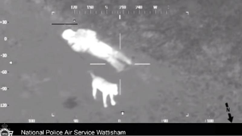 Pies i jego właściciel zaginęli w lesie. Podczas poszukiwań policyjny helikopter zarejestrował TO!