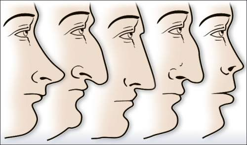The-Shape-of-Your-Nose-is-not-a-Coincidence-and-Says-a-lot-About-You.jpg