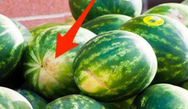 Jak wybrać najsmaczniejszego arbuza? Zwróć uwagę na ten szczegół!