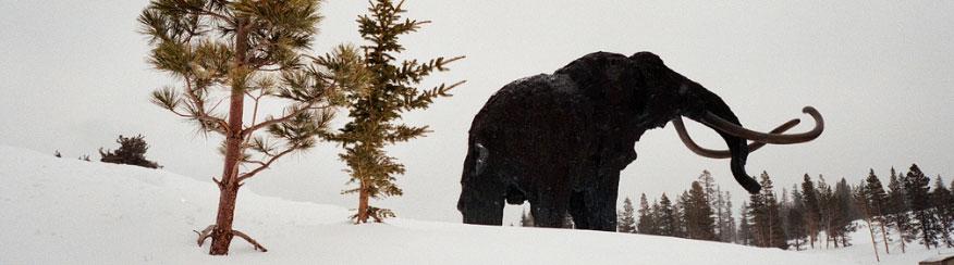 mammoth-pas