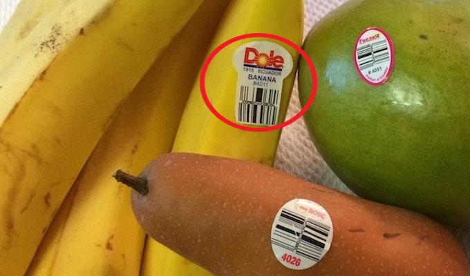 fruit-code