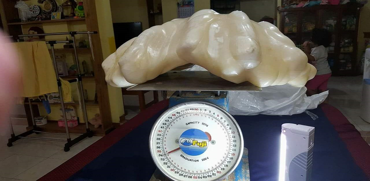 worlds-biggest-natural-pearl