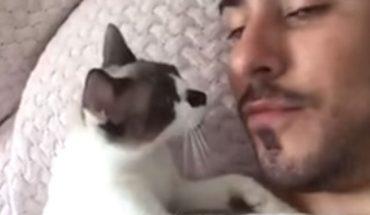 Uroczy kociak domaga się buziaków od swojego przystojnego pana. Uwaga, to nagranie poraża słodkością