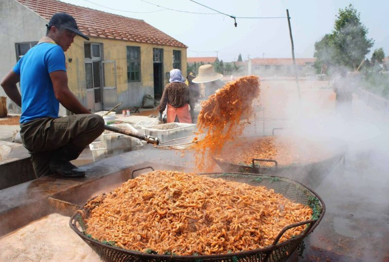 chinese-shrimp-1