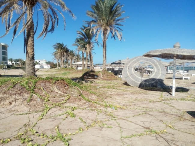 deserted-complex-raouf-hotels-2