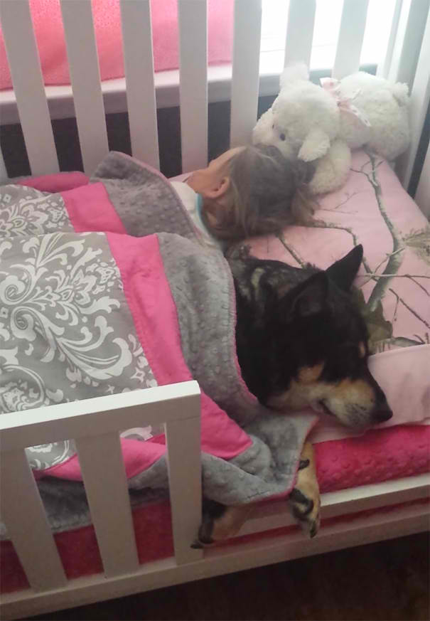 dog-and-baby-sleeps1