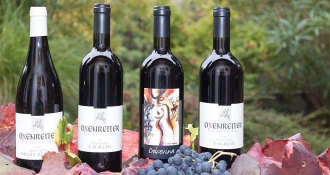 wine-provides-longevity-p