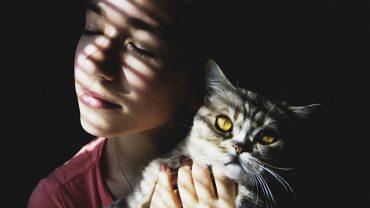 Dlaczego koty lubią przytulać się do ludzi? Niestety nie dlatego, że ich lubią. Poznajcie prawdziwe 3 powody kociego łaszenia się