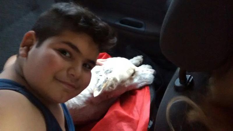 Maucao pokazał, czym jest prawdziwa dziecięca miłość. Gdy znalazł bezdomnego psa, nie wahał się ani chwili