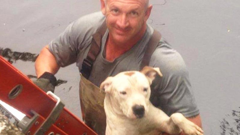 Policjant ratuje tonącego psa. Gdyby się wtedy obejrzał, dostrzegłby coś jeszcze...