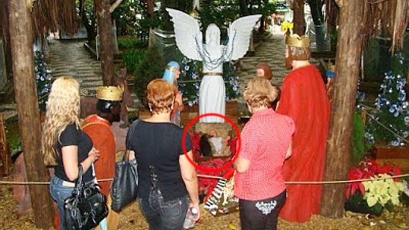 Do bożonarodzeniowej szopki przybył nocą nieoczekiwany gość! Wierni dostrzegli go rankiem, jak spał w żłóbku u stóp małego Jezuska