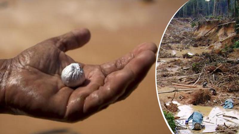 Gorączka złota i chciwość wyniszcza dżunglę i jej mieszkańców, jeśli się to nie skończy zagrożeni będziemy wszyscy!