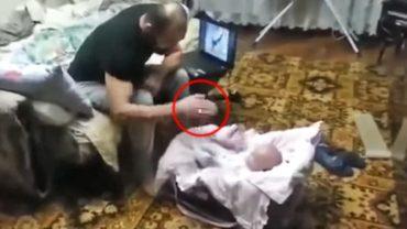 Kotka nie mogła patrzeć, jak pewien ojciec bije swoje dziecko. Bez wahania zrobiła TO!