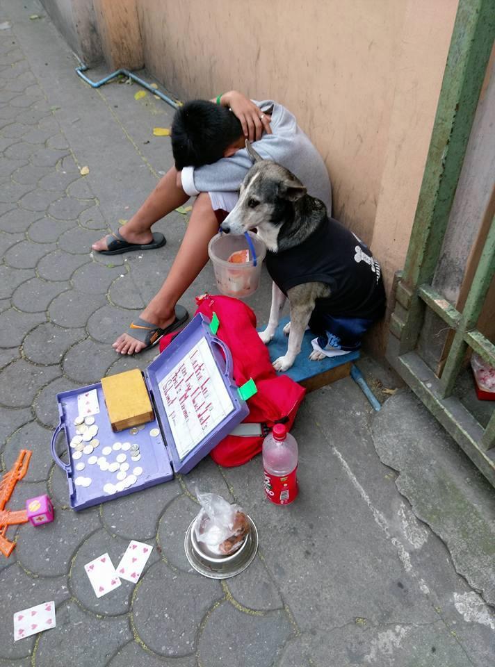 Tämä nääntynyt poika ei jaksanut enää kerjätä kadulla. Sitten tämä koira teki jotain upeaa!