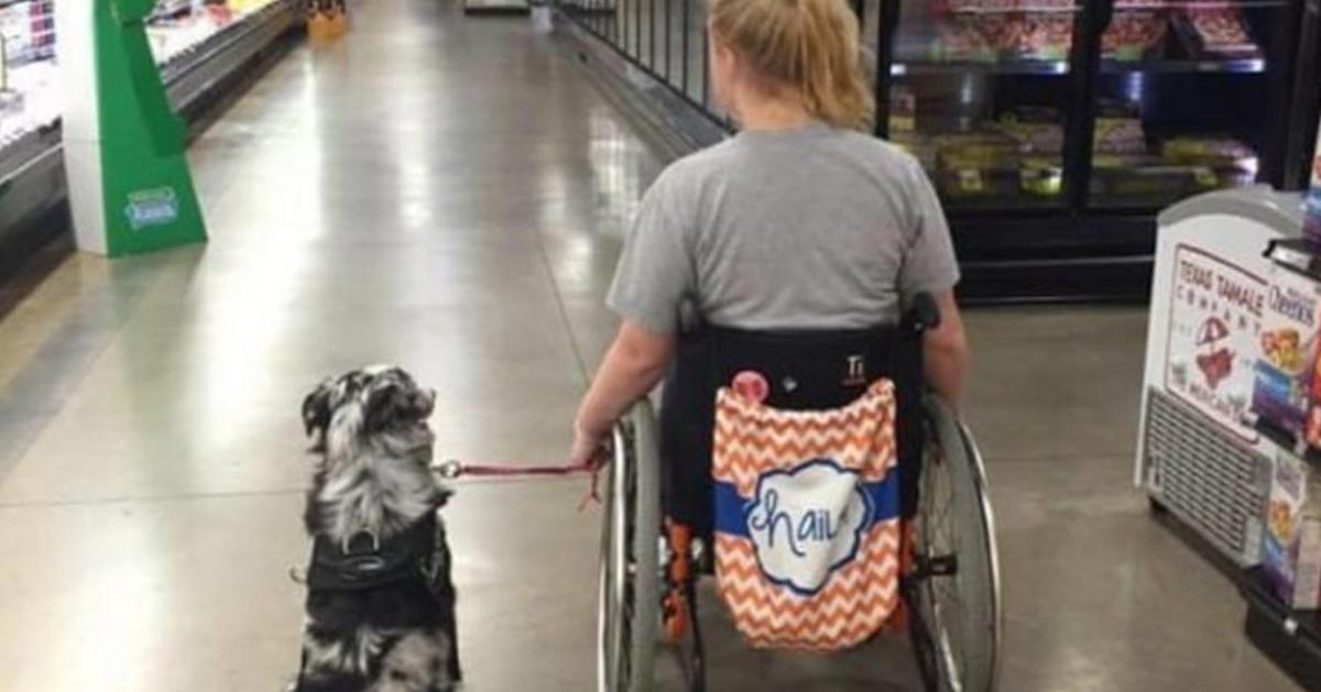 Nie słuchał, kiedy powiedziała, żeby nie zaczepiał jej psa przewodnika. Chwilę później stało się coś strasznego!
