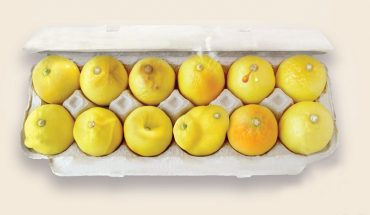 Na pozór to tylko zdjęcie cytryn w opakowaniu od jajek, ale w rzeczywistości to plakat kampanii zdrowotnej, która może uratować życie tysiącom kobiet