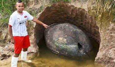 W przydomowych ogródkach znaleźli prawdziwe skarby. Nie sądzili, że ich ziemia kryje coś tak cennego!