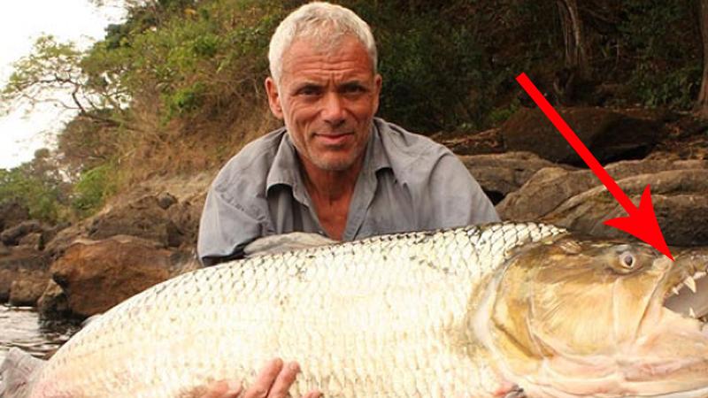 Wybrał się powędkować i złapał nieznaną rybę. Gdy zajrzał do jej pyska, zrozumiał, jakie miał szczęście!