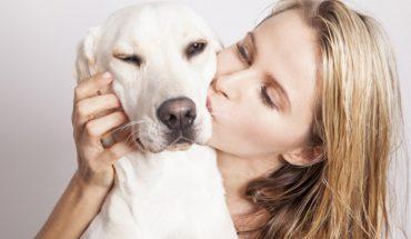 Te rzeczy robimy psom, a one zupełnie ich nie cierpią! Twój pupil bardzo się ucieszy, gdy przestaniesz tak go traktować