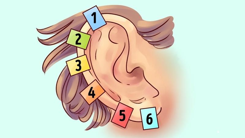 Uszy u człowieka są jak odciski palców - niepowtarzalne! A w dodatku zdradzają mnóstwo informacji o naszych genach