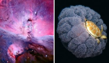 18 zjawiskowych fotografii potwierdzajacych, że świat jest nieskończenie piękny i ciekawy