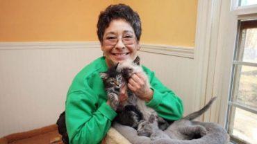 Od 1992 roku Linea Lattanzi opiekuje się kotami. Przez ten czas miała około 28 tysięcy podopiecznych, a na ich utrzymanie wydała 1,6 miliona dolarów!