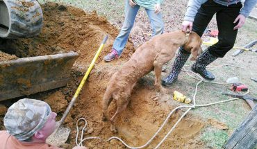 Wczołgały się do kanału ściekowego, by uratować psa, który utknął w rurze. Te dzieciaki uratowały życie Penny