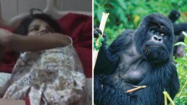 Wydaje dziwne dźwięki, porusza się na czworakach i rzuca się na ludzi! Oto 8-latka, która prawdopodobnie całe życie spędziła w dżungli wśród małp