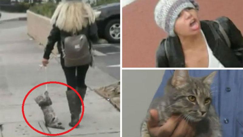 Kobieta ulicami Los Angeles ciągnęła kota na sznurku! Udręczone zwierze uratowali przechodnie, a jego agresywna właścicielka uciekła i jest poszukiwana