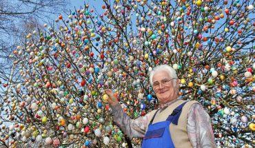 50 lat temu zawiesił na drzewie 18 plastikowych jajek. Nie spodziewał się, że w przyszłości będą je oglądać turyści z całego świata!