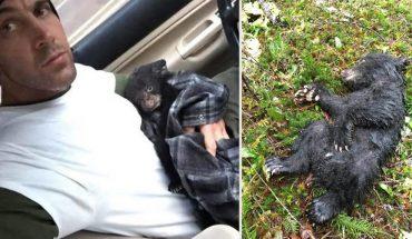 Podczas leśnej wycieczki natknął się na bliskiego śmierci małego niedźwiedzia. Bez wahania zaryzykował życie by mu pomóc