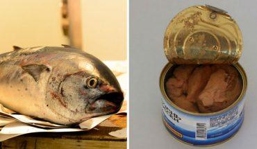 Kupujesz tuńczyka w przekonaniu, że zjesz zdrową rybę? Jak ognia unikaj tego w puszcze, bo może Ci tylko zaszkodzić!