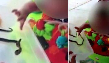 Matka pozwoliła by jej roczną córeczkę ugryzł wąż, bo… chciała dać dziecku życiową lekcję