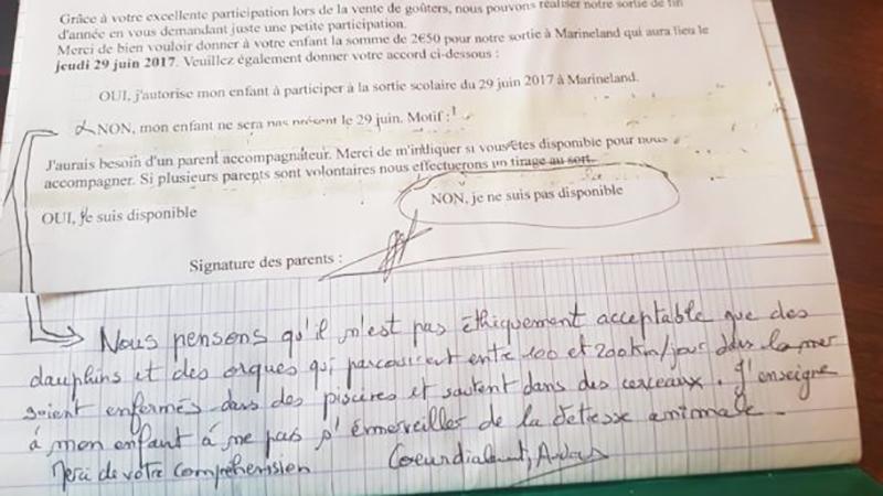 Oburzona matka napisała list do nauczycielki, w którym wyjaśnia, dlaczego jej syn nie może iść z klasą do oceanarium! Jej słowa trafiają w sedno