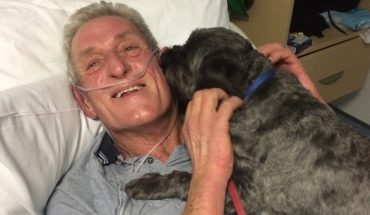 Wierny pies obudził swego właściciela ze śpiączki. Ta historia pokazuje jak pięknie zwierzę potrafi się odwdzięczyć za okazaną miłość