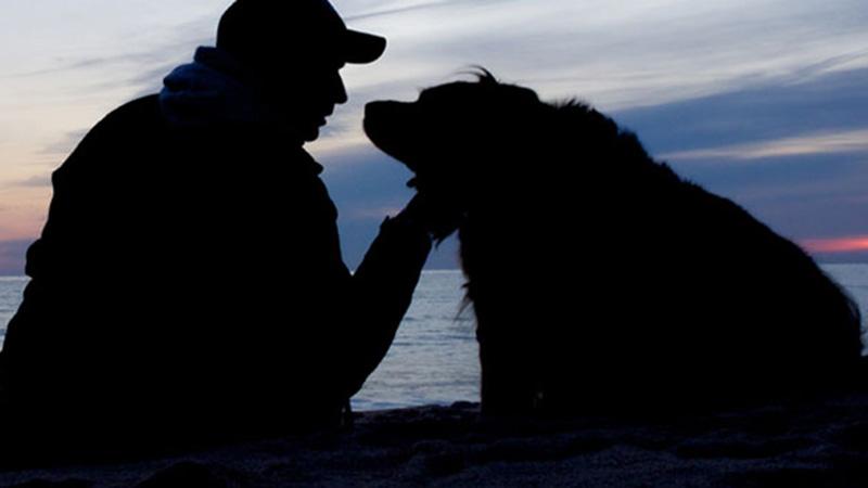 Był na skraju samobójstwa. Kiedy wierny pies przegryzł pętlę, na której miał się powiesić, nie zaplótł nowej, uświadomił sobie, że pragnie żyć!