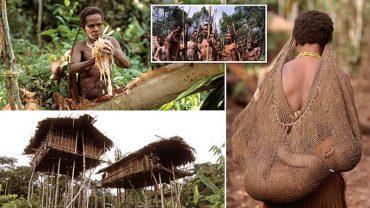 Choć nasi przodkowie dawno zeszli z drzew, Korowai na nich pozostali. Mieszkają w domkach wysoko na drzewach, a cywilizacja nawet ich nie musnęła