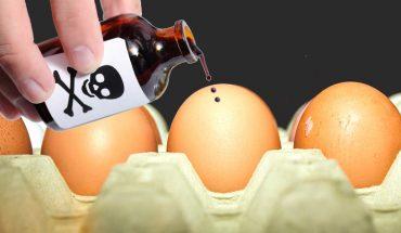 Do sprzedaży coraz częściej trafiają skażone jaja. Czy mamy się czego bać?